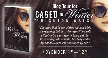 PA-9705 Brighton Walsh Blog Tour Banner.indd