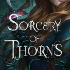The time it was about Sorcery of Thorns